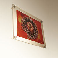 Manufacturer supplies acrylic wall mount picture frames