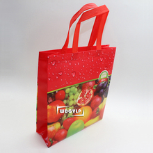 Eco Heat Seal Ultrasonic PP Non Woven Fabric Laminated Drawstring Shopping Carry Bag Non-woven Cooler Bag Wine Garment Bag