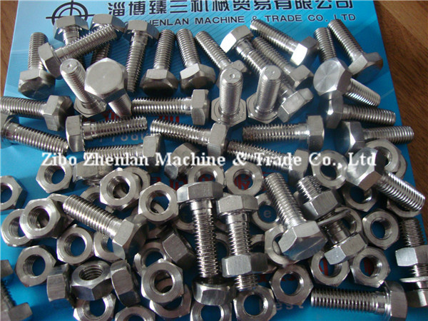 Hex Bolt nut , 304/316 Bolts Nuts Washers,SUS Bolts And Nuts