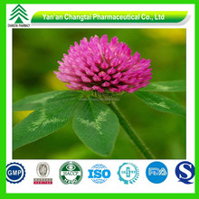 Food additive Red clover extract isoflavones Powder
