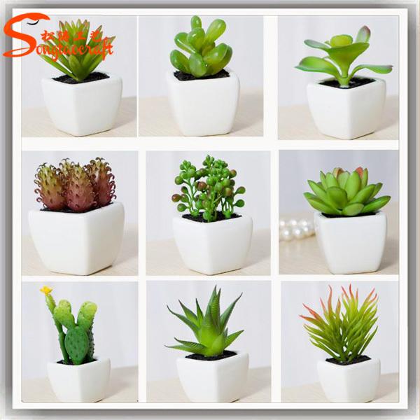 combination of potted succulent plant wholesale artificial succulent plant micro mini succulent. Black Bedroom Furniture Sets. Home Design Ideas