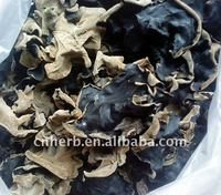 Dried edible black fungus