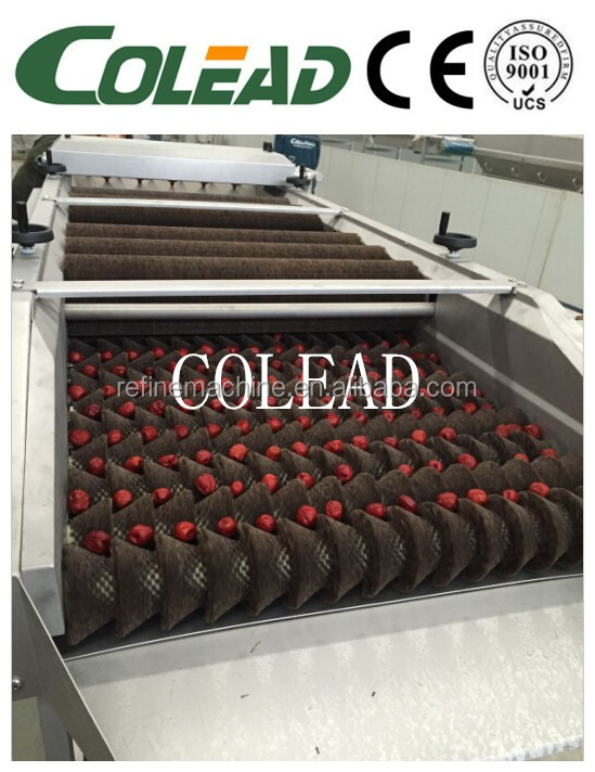 soft brush potato washing machine /cleaning machine for fruit from Colead