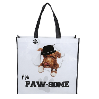 Cute design pp laminated non woven shopping bag