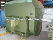 various styles High Voltage Ac Motor