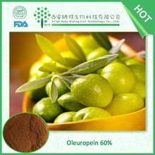FDA Manufactory high quality pure natural Olive Leaf Extract 40% ,60% Oleuropein Pharmaceutical Grade