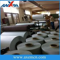 Super 6021 Laminated Mylar Film For Motor Winding Insulation