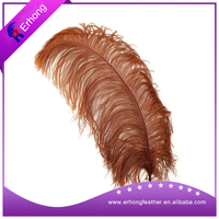 wholesale ostrich feather 45-50 cm