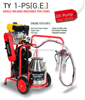 Melasty Single Milking Machine - with Gasoline Engine - oil pump - S/S bucket - silicone liners