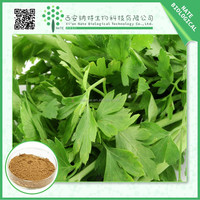 High quality natural celery extract Apigenin 20:1
