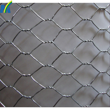 China Manufacturer galvanized hexagonal chicken wire mesh kenya