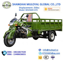 Strong Export Standard 3 Wheel Cargo Motorcycle MS250ZH-GTX with LED Light