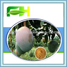 Best Quality Natural Mango Seed Extract