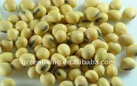 export grade soybean from china heilongjiang