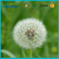 ISO22000 factory supply herb Dandelion seeds for sale