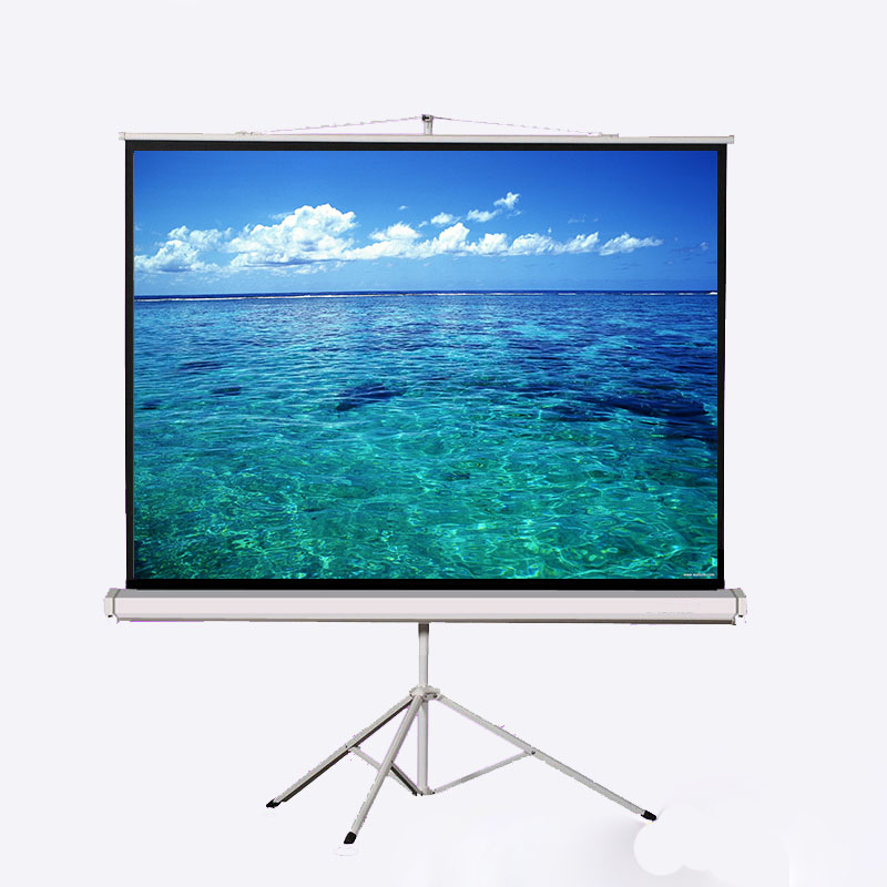 Business Negotiation portable Projection Screen