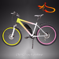 CE strong electric bike chopper bicycles for adults