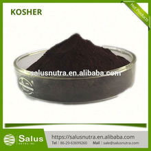 Hot sale Acai berry extract