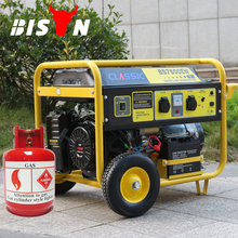 BISON(CHINA) Zhejiang Gas Series Home Gas Generator Biogas Generator Price Pakistan Nature Gas Generator
