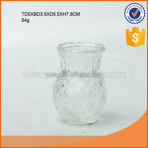 Shaped pineapple glass vase glass flowerpot clear or painting