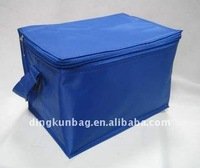 Popular Polyester Can Bag/Bottle Cooler