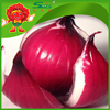 /product-detail/2015-new-crop-chinese-red-onions-with-high-quality-60407066980.html