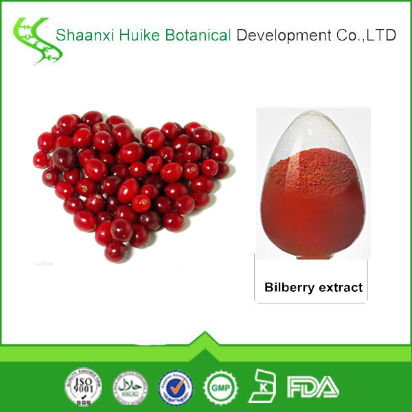Hot sale new product High quality Bilberry Extract standard proanthocyanidin