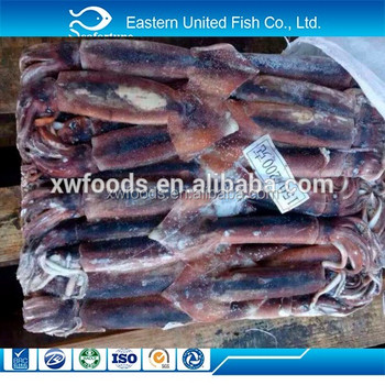 Frozen Illex Squid Whole Round size 150-200g