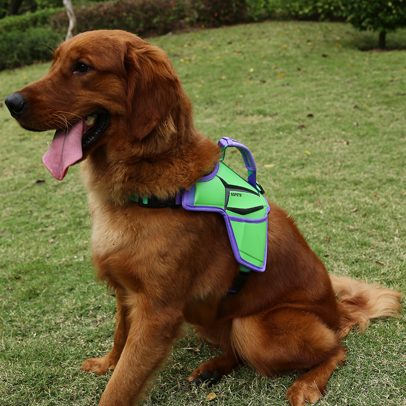 Premium Wholesale Adjustable Neoprene Dog Harness Manufacturer from China