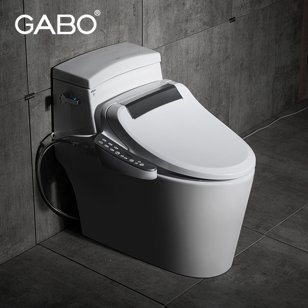 Automatic toilet with color toilet seats