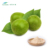 Natural Sweetener Organic Luo Han Guo Monk Fruit Extract Powder Mogroside V 25% 40% 50%