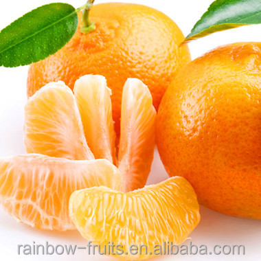 Hot Sale Fresh Sweet High Quality Ponkan/Lugan Mandarin Orange