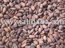 cocoa/cacao beans from farm, low price