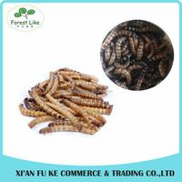 Bulk Pet Food Freeze Dried Super Barley Worm