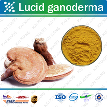 100% Natural Lucid Ganoderma /Reishi Extract