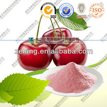 Acerola Cherry Extract/Natural Vitamin C Powder