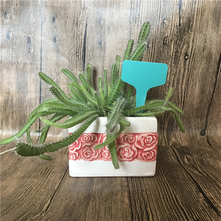 Paper plastic plant vegetable flower garden tag