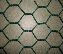 Eco Friendly black vinyl coated poultry wire netting 1/2inch