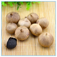 Transparent Canned Packed Aged Black Garlic Extract Powder