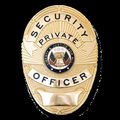 Custom Made Security Badges