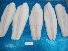 Frozen Fish Fillets Pangasius