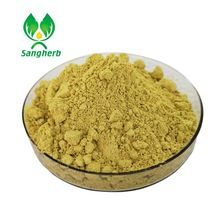 Factory Supply Ginkgo Flavone Glycosides , Terpene Lactones , Ginkgo Biloba Extract