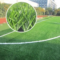 Long Life Uv Resistent Soccer Field Natural Grass