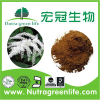 Favorable price best quality Black cohosh extract , free sample for initial trial, in bulk stock