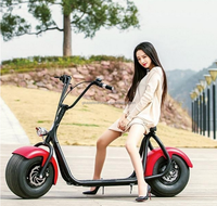 Best selling 60v 1000w harley fat tire electric bike/ citycoco electric scooter/electric motorcycle for adult