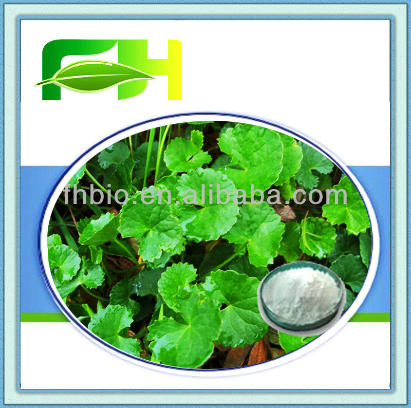100% Water-solubility Centella Asiatica Extract/70%-80% Total triterpenes