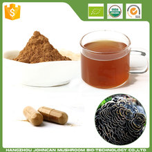 Best Quality Coriolus Versicolor Botanical Extract
