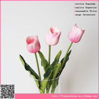 Furniture market together sale with real touch tulip flowers