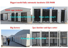 large 50000 eggs chicken hatchery/egg incubator/poultry egg incubator