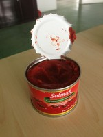 fresh canned tomato paste 70g 198g 400g